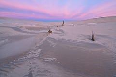 黎明,银色湖沙丘 库存图片