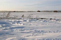 昏暗的冬天风景在俄罗斯 免版税库存图片