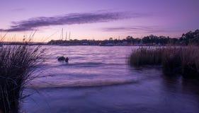黄昏的海洋与风船 免版税库存照片