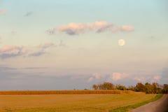 黄昏的玉米田农场与满月 免版税图库摄影