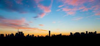 黄昏的街市多伦多 免版税库存图片