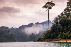 黄昏, Khao Sok国家公园的颜色 库存照片