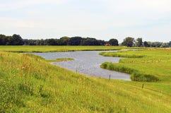 易北河的草甸 免版税库存照片