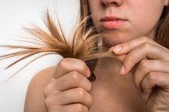 易碎头发的问题-,损坏,烘干和损失头发概念 库存图片
