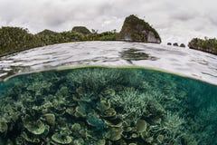 易碎的珊瑚礁和石灰石海岛 免版税库存照片