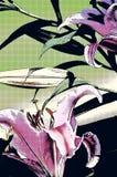 星凝视的人百合艺术性的抽象Florals 免版税库存照片
