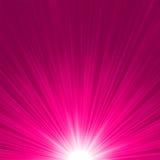 星形破裂的桃红色和空白火。 EPS 8 库存图片