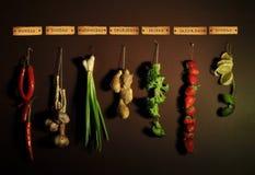 星期的菜单-辣椒,葱,大蒜,姜,圆白菜,草莓,石灰 库存图片