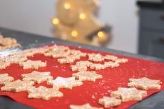 星状自创被烘烤的桂香圣诞节曲奇饼 免版税库存照片