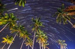 星足迹与椰子的夜 库存照片