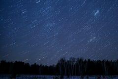 星跟踪天空森林 图库摄影