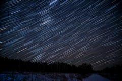 星跟踪天空森林 免版税库存照片