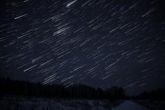 星跟踪天空森林 库存图片