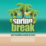 春假在模糊的海滩背景的棕榈树 库存图片