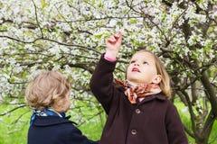 春天…上升了叶子,自然本底 逗人喜爱的小女孩(姐妹3和4岁)近 免版税库存图片