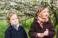 春天…上升了叶子,自然本底 逗人喜爱的小女孩(姐妹3和4岁)近 库存照片
