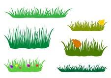 春天、夏天和秋天草的片段 设置自然的设计元素 r 皇族释放例证