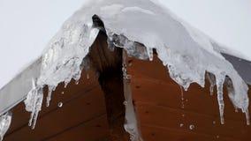 春天下落,冰柱 影视素材