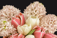 春天与处理过滤器的花的布置 免版税图库摄影