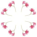 春天与开花的木兰花的水彩花圈 纺织品、纹理,贺卡的等背景 库存图片