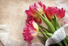 春天与拷贝空间的郁金香花美丽的花束  免版税库存图片