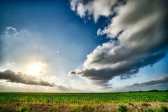 春天与日落和云彩的农田在得克萨斯 免版税图库摄影