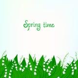 春天与铃兰的卡片背景 图库摄影
