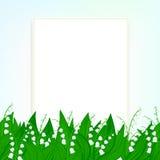 春天与铃兰的卡片背景 免版税库存图片