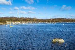 春天与风轮机的海风景 库存图片