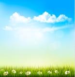春天与绿草和蓝天的自然背景 库存例证