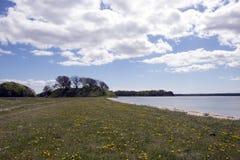 春天丹麦海岸线 库存照片