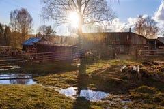 春天乡下风景 太阳光芒和水坑在村庄 免版税库存图片