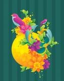 春天五颜六色的背景 库存图片