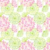 春天五颜六色的花无缝的样式 免版税图库摄影