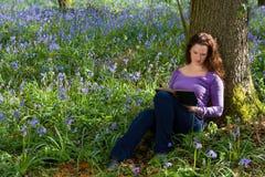 春天会开蓝色钟形花的草和书 库存图片
