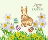 春天兔子和花 免版税库存图片