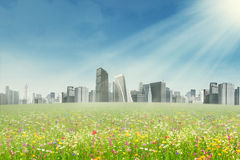 春天公园和现代城市 免版税库存照片