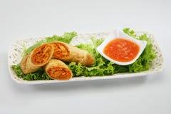 春天劳斯用辣味番茄酱 图库摄影