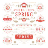 春天印刷设计集合 减速火箭和葡萄酒样式模板 免版税图库摄影
