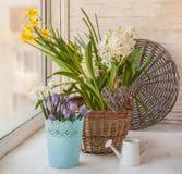 春天在与结辨的心脏的窗台,浪漫开花 库存照片