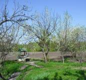 春天在乌克兰村庄 库存照片