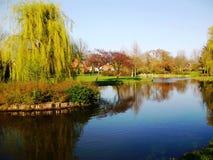 春天在公园Wilhelminaplantsoen在荷恩,荷兰,荷兰 免版税库存照片