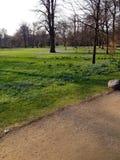 春天在哥本哈根 库存照片