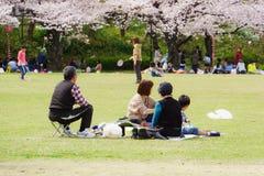 春天在大阪 免版税库存图片