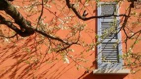 春天在意大利 免版税库存图片