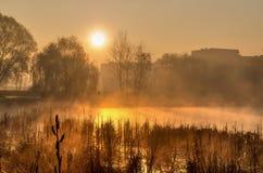 春天在日出的早晨风景 免版税库存图片