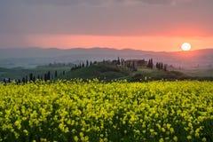 春天在日落的托斯卡纳 库存照片