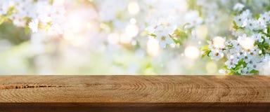 春天在有土气木桌的一个公园开花 库存照片