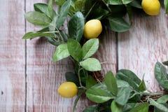 春天在木盘区背景的柠檬花圈 免版税图库摄影