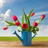 春天在木表的郁金香花束 库存图片
